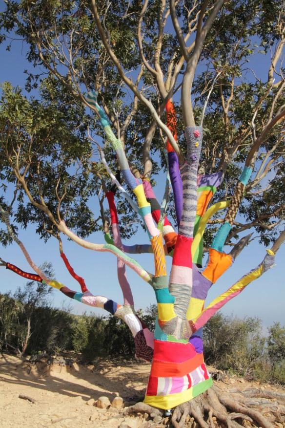 Santa Barbara Yarn Bomb