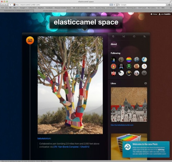 Elastic Camel Space