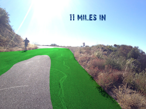 P2P Mile 11