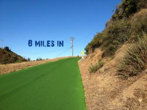 P2P Mile 8